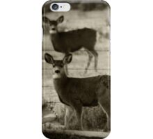 Spotted iPhone Case/Skin