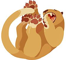 Lioness Photographic Print