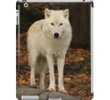 Spirit of the forest iPad Case/Skin