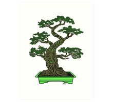 Mr. Bonsai Art Print