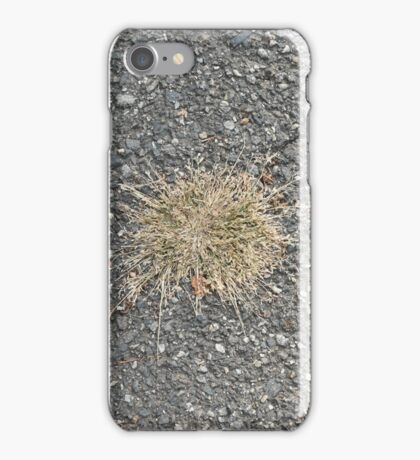 Old pavement with old grass iPhone Case/Skin