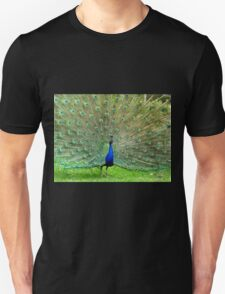 Who Can Resist Me? - Peacock - NZ Unisex T-Shirt