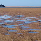 Stingray holes - Farquhar Inlet. by Liz Worth