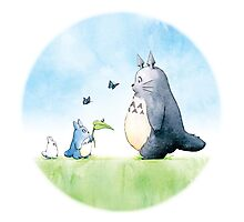 Totoro with butterflies #2 Photographic Print
