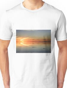 Sunset in flight Unisex T-Shirt