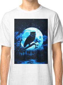 view in the evening Classic T-Shirt
