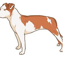 Staffordshire Terrier (red and white) by heyletsart