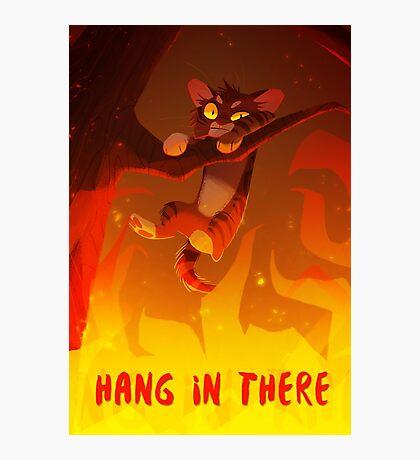 Bramblekit | Hang In There! Photographic Print