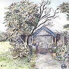 Lake Munmorah Homestead by John Douglas