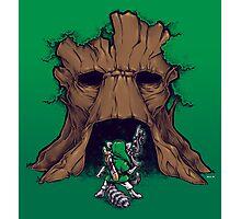 The Groot Deku Tree Photographic Print