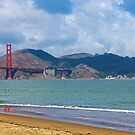 Golden Gate Cloudy Day Pelicans by David Denny