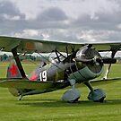 Polikarpov I-15bis Chaika 4439 white 19 by Colin Smedley