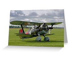 Polikarpov I-15bis Chaika 4439 white 19 Greeting Card