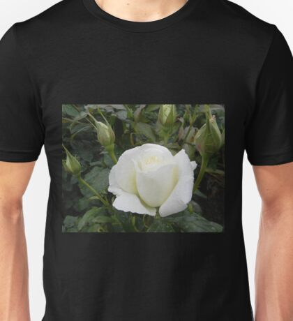 White Rose Opening Unisex T-Shirt