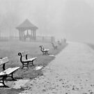 winter fog by marxbrothers