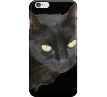 Black Cat Isolated on Black Background iPhone Case/Skin
