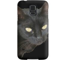 Black Cat Isolated on Black Background Samsung Galaxy Case/Skin