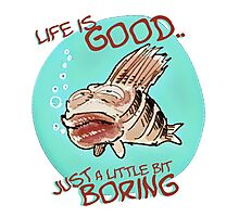 bored fish cartoon style funny illustration Photographic Print