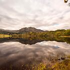 Loch Achray ~ Reflections by M.S. Photography/Art