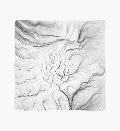Linear Landscape 1 Scarf