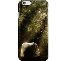 Horse In The Mist - Tranquility 2 iPhone Case/Skin