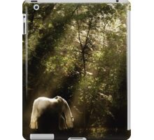 Horse In The Mist - Tranquility 2 iPad Case/Skin