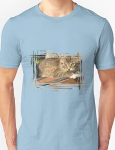 Funny striped kitten 3 T-Shirt