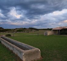 Old Basham's Beach Cow Shed by Stuart Daddow Photography