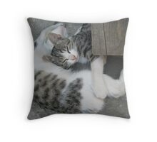 Sleapy,sleapy,sleapy…_Martinove mace Throw Pillow