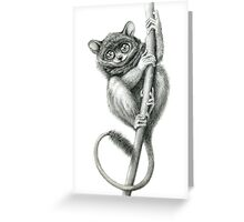 Philippine Tarsier G047 Greeting Card