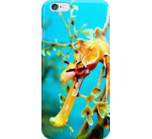 Leafy Seadragon Face iPhone Case/Skin