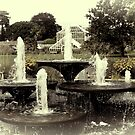 Botanical Fountain by Country  Pursuits