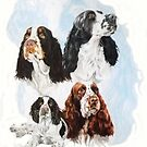 English Springer Spaniel /Ghost by BarbBarcikKeith