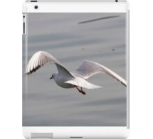seagull on lake iPad Case/Skin