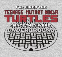 Iv'e liked the Teenage Mutant Ninja Turtles since they were UNDERGROUND by shirtsforshirts