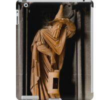 Terracotta Wizard iPad Case/Skin