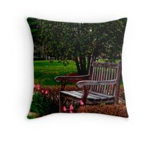 A Time For Everything (please read verse)  Throw Pillow