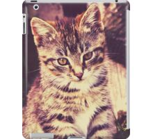 Pretty Striped Kitten 2 iPad Case/Skin