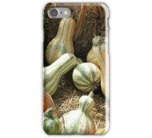 Gourd Collection iPhone Case/Skin