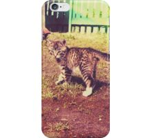 Pretty Striped Kitten 3 iPhone Case/Skin