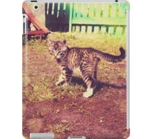 Pretty Striped Kitten 3 iPad Case/Skin