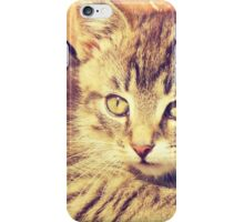 Retro Kitten Photo 2 iPhone Case/Skin