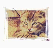 Retro Kitten Photo 2 Kids Clothes