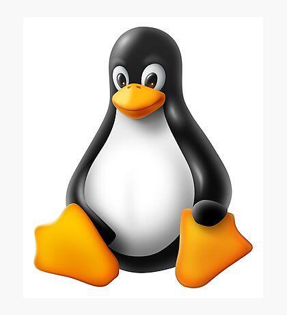 Linux Penguin – Tux Photographic Print