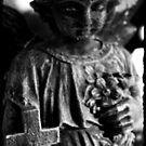dark angel by leapdaybride