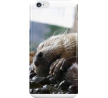 Sleepy otter iPhone Case/Skin