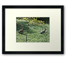 I'll Do What He Does.... Framed Print