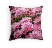 A Sea of Pink Chrysanthemums Throw Pillow
