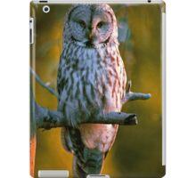 GREAT GRAY OWL iPad Case/Skin