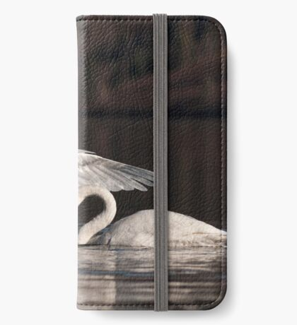 Swan Song iPhone Wallet/Case/Skin